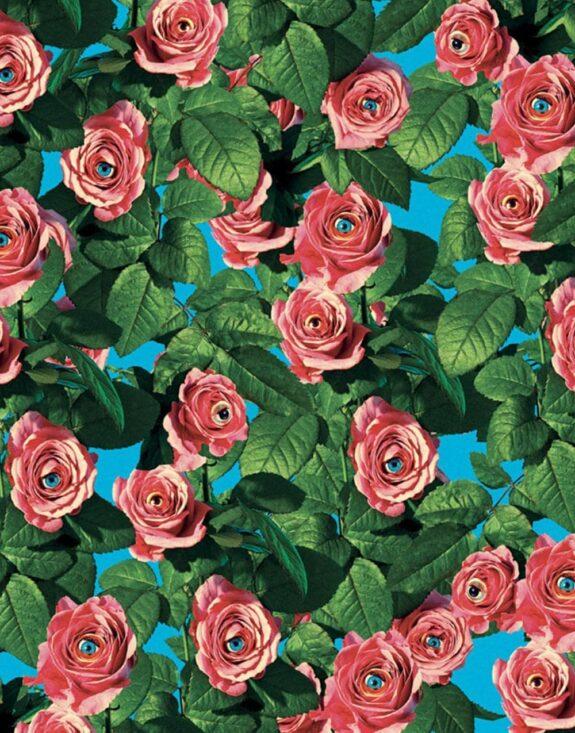 wallpaper-roses